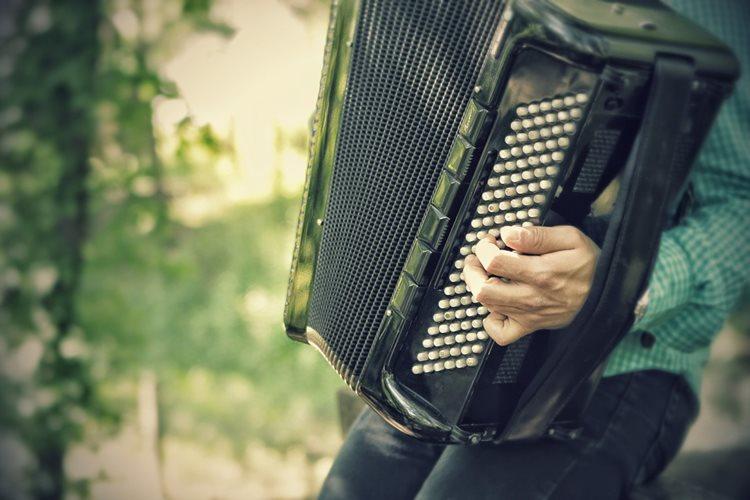 Harmonika dugmetara - autori narodnih pesama